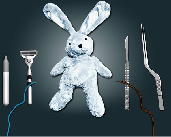 bunny surgery